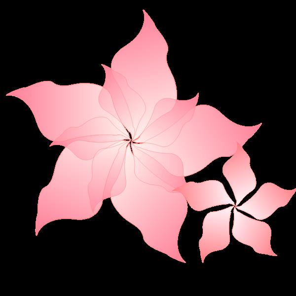 Pink flower-1572774071