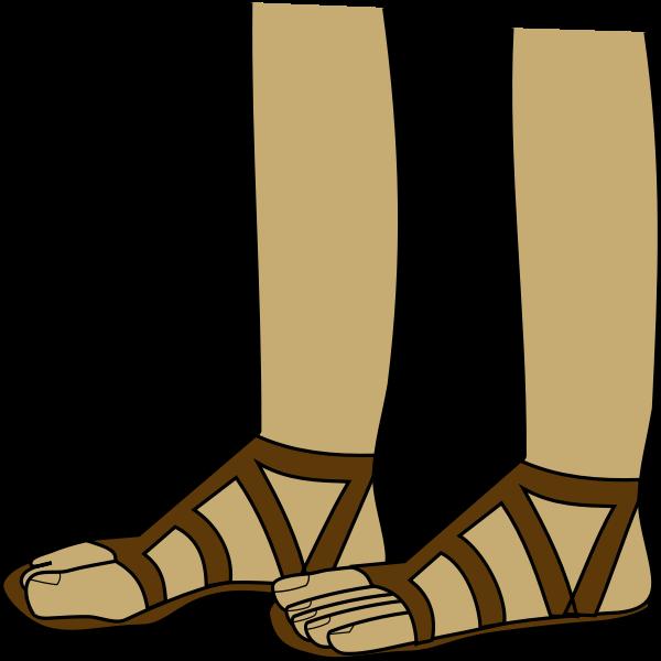 Feet in sandals vector image