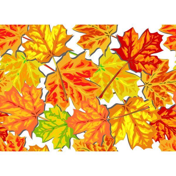 Bright fall leaves vector graphics