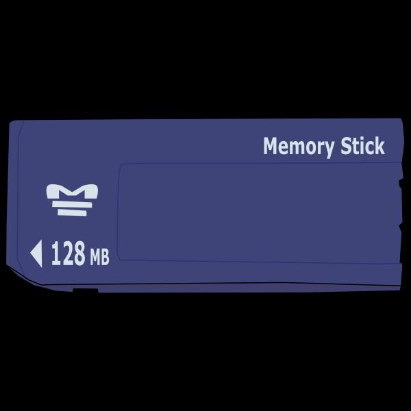 Memory stick image