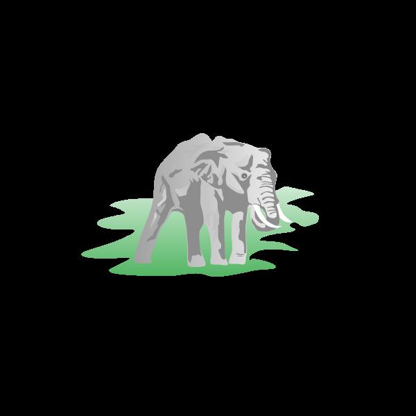 Elephant-1571837451