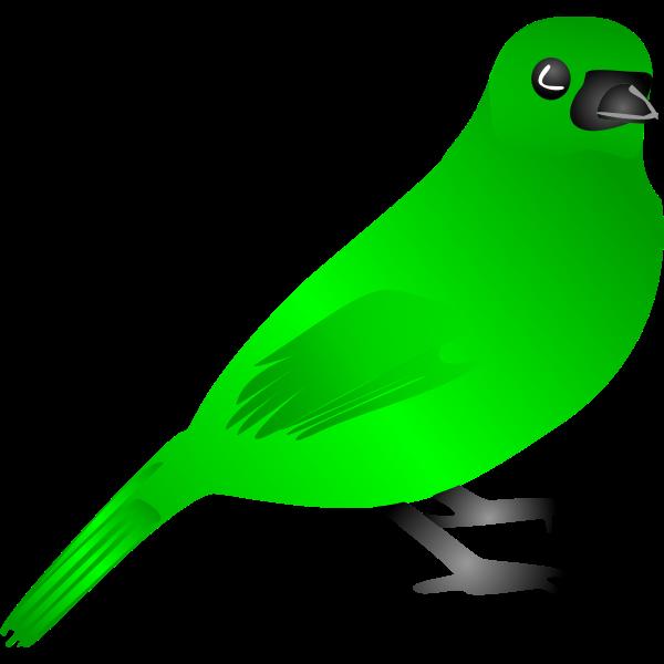 Green bird vector drawing