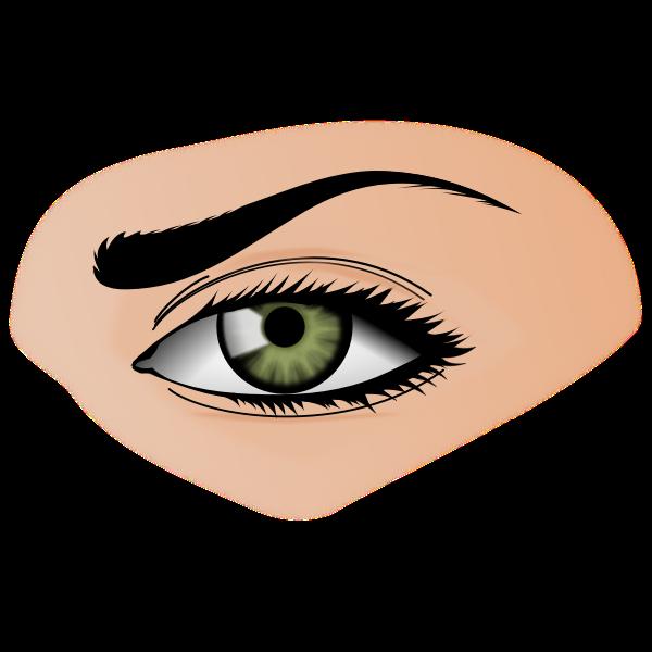 Green eye illustration