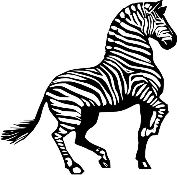 Zebra horse clip art graphics