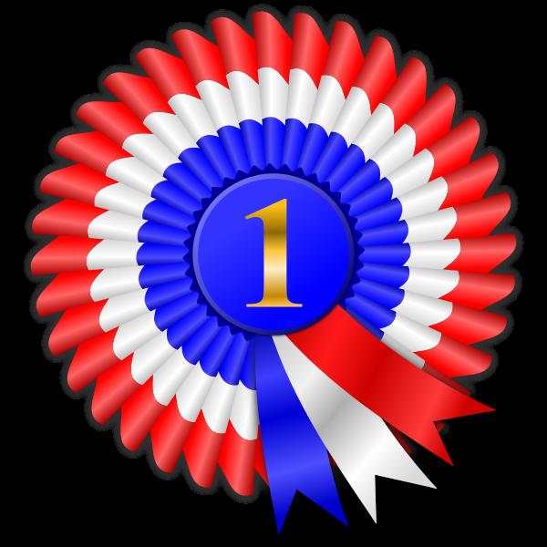 Colorful rosette ribbon vector image