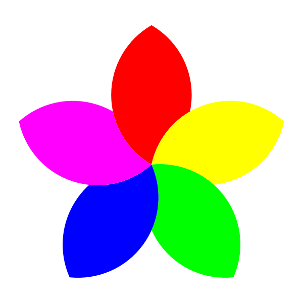 Colorful 5 petal flower vector image