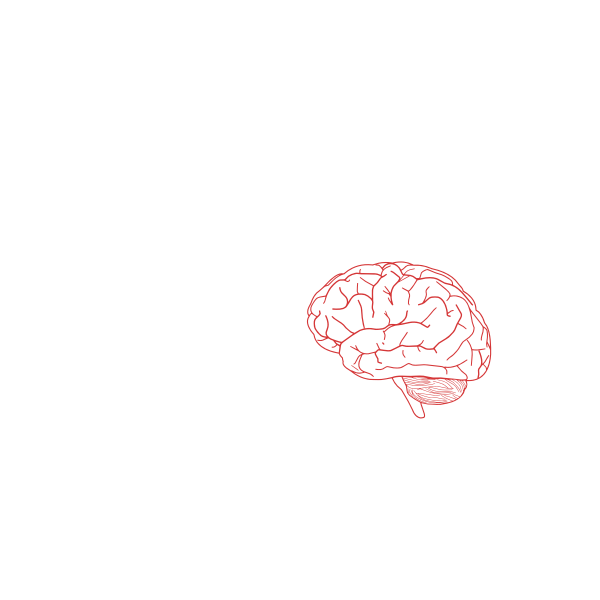 Vector image of side view of human brain in pink