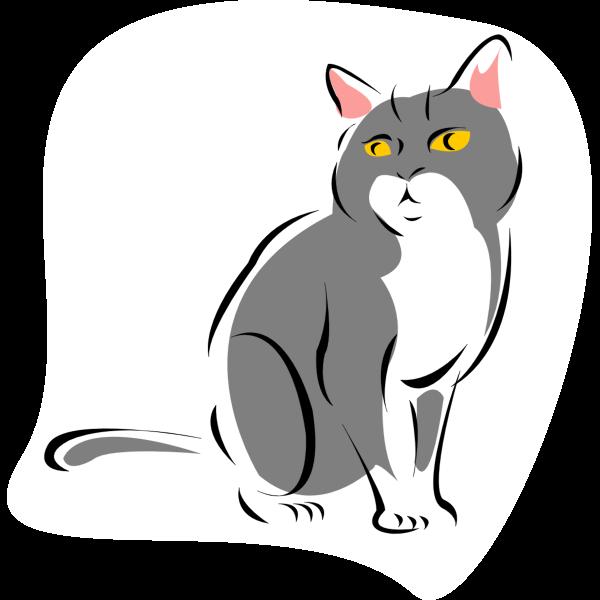 Cat vector drawing