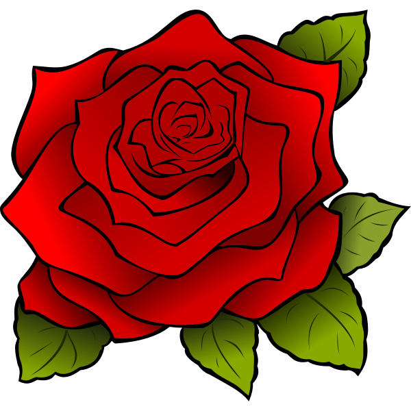 Graphics of blooming rose with black outline