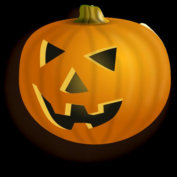Orange pumpkin lantern with shadow vector image