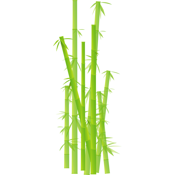 Vector clip art of bamboo stalks