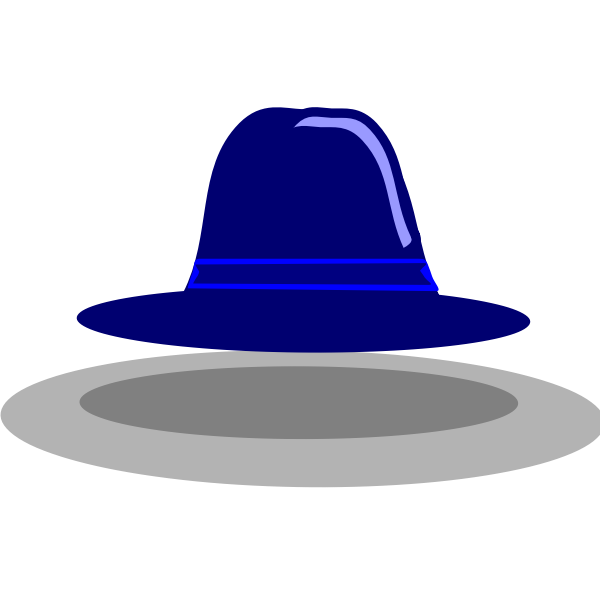 Wide rim hat vector image