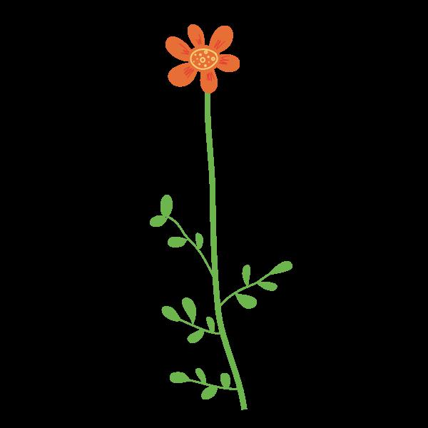 Vector image of soft orange petals flower