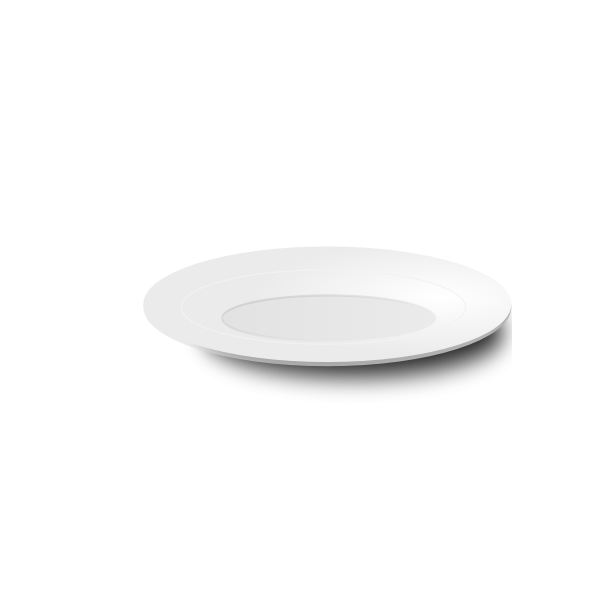 Vector image of white plate with shadow