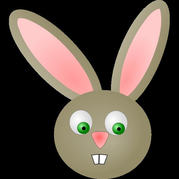 Cartoon rabbit-1573553647