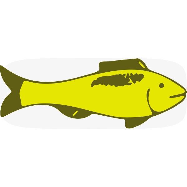 Green fish vector image