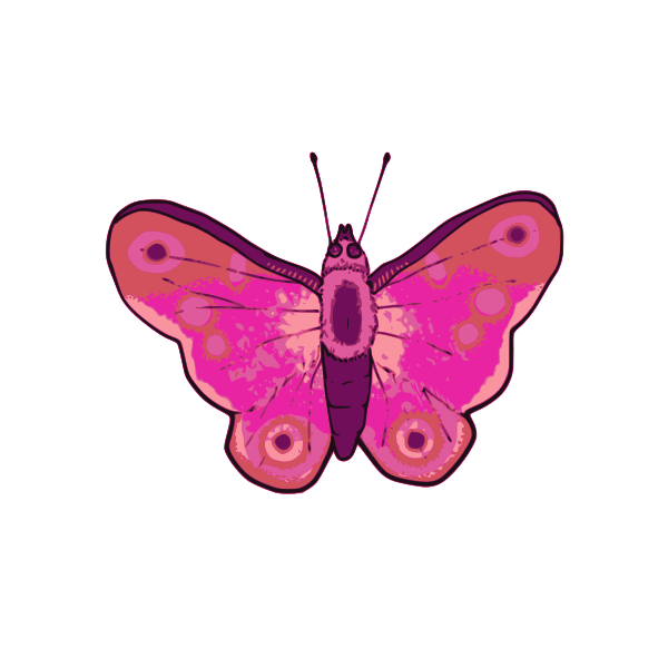 Vector illustration of pink and purple butterfly