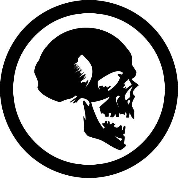 Human skull symbol vector image