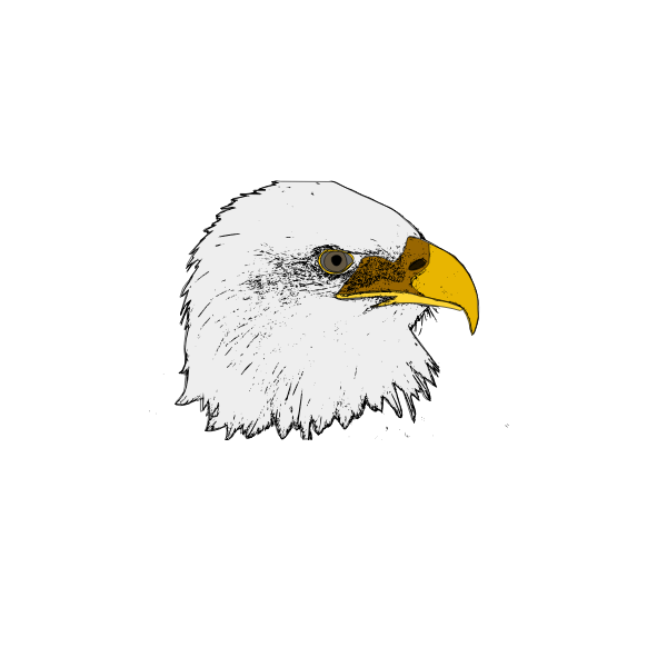Eagle vector art