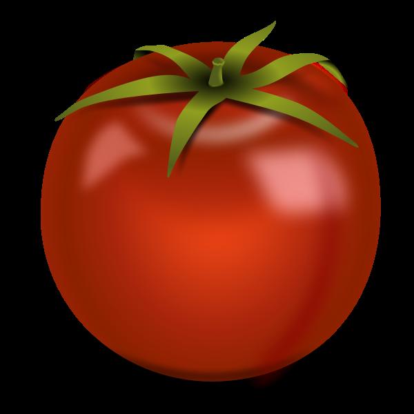Glossy tomato