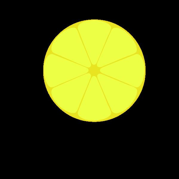 Lemon profile vector image