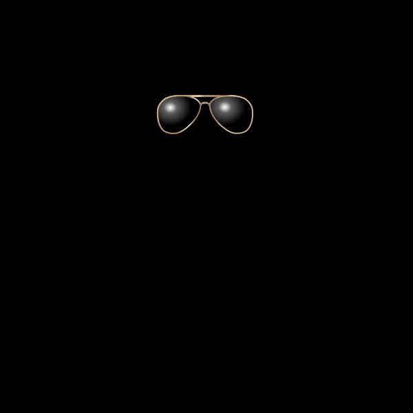 Aviation glasses