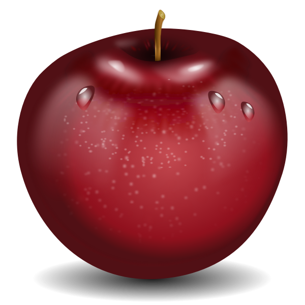 Vector drawing of photorealistic red wet apple