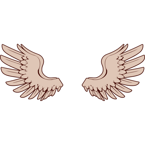 Vector image of bird wings