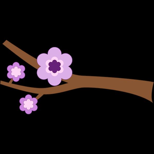 A branch