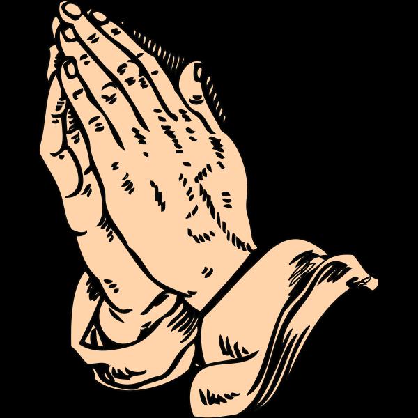 Prazing hands vector image