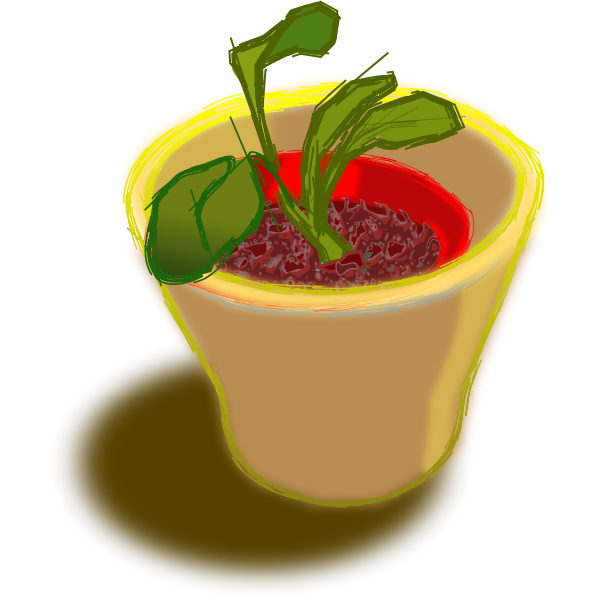 Vector image of plant in two pots