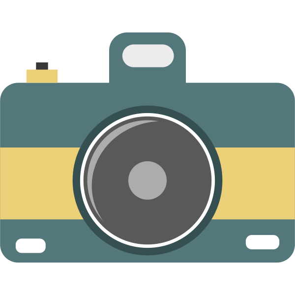 Flat camera icon vector image
