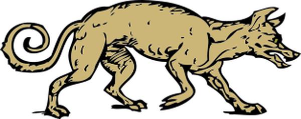 mangy dog