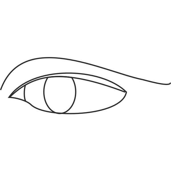 Eye line drawing