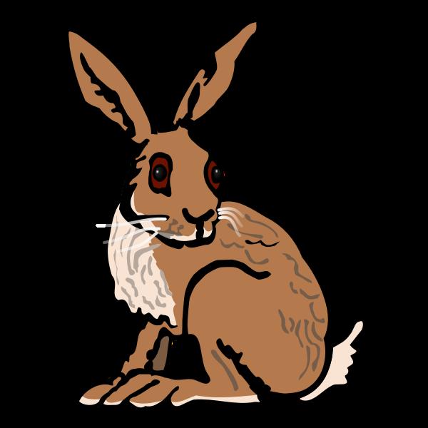 Hare - coloured
