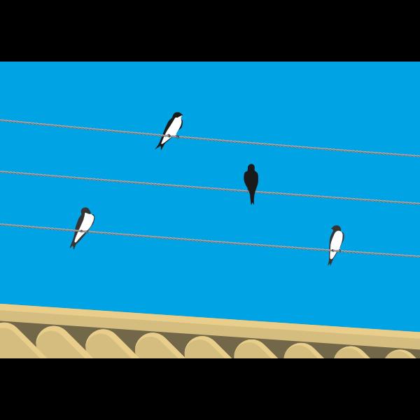 Birds standing on wires vector clip art