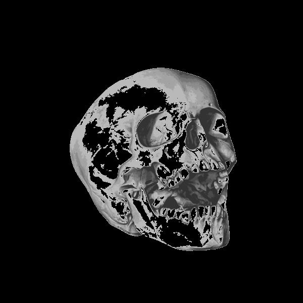 Yawning skull image