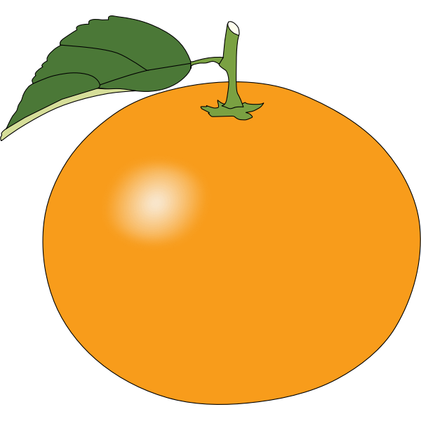Simple sweet orange