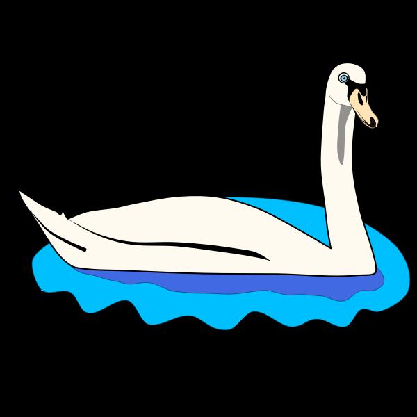 Swan in water-1632224270