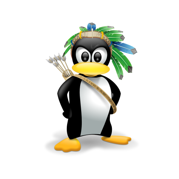 Indian penguin vector image
