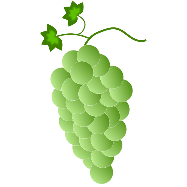 Green-white grapes
