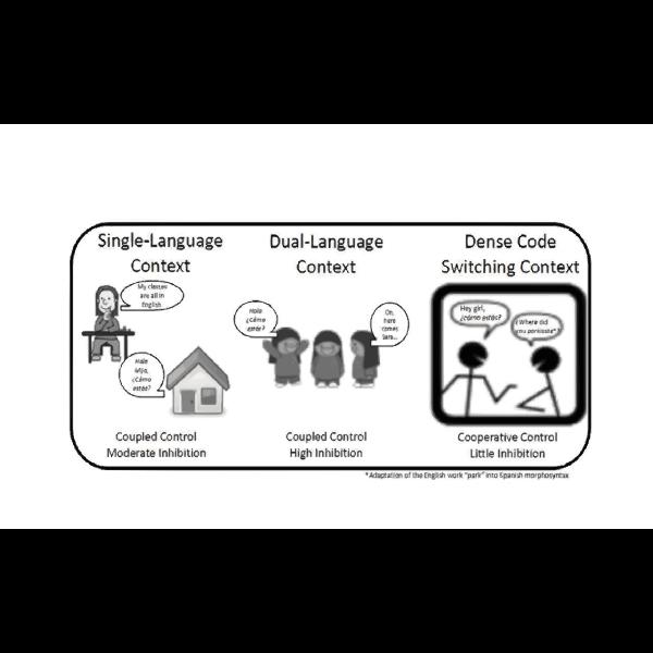 Adaptive Control Hypothesis