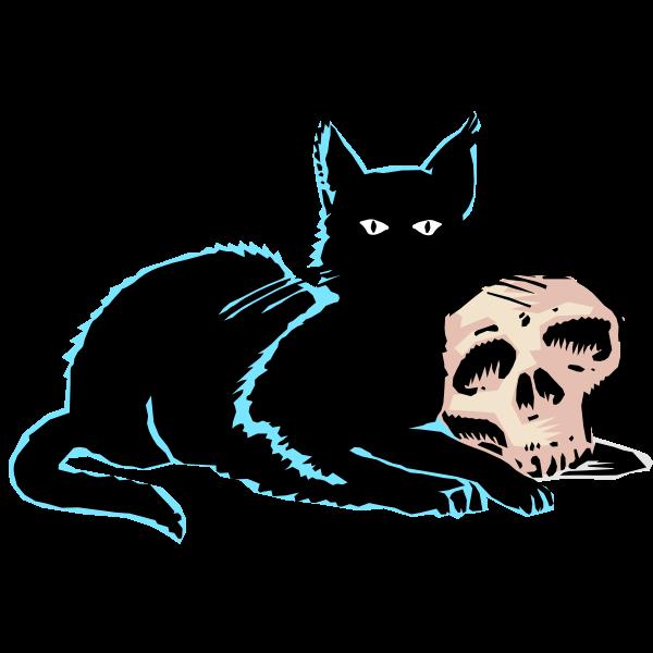 Skull and black cat