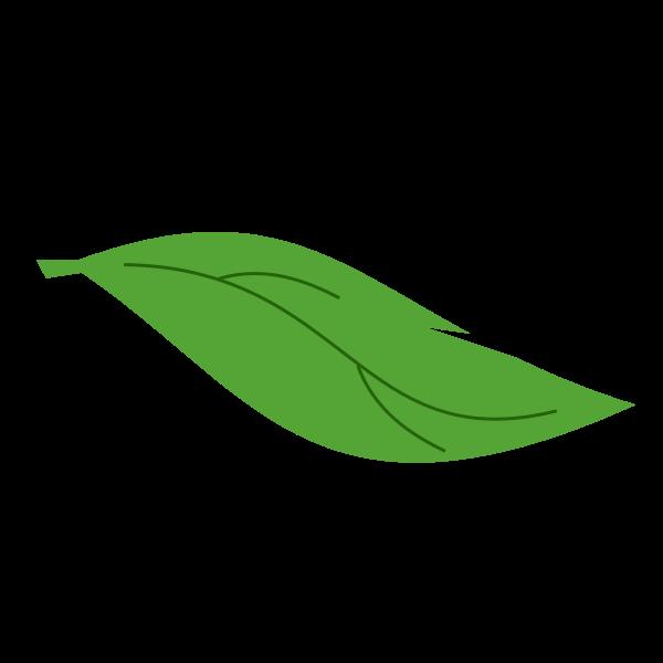 Leaf-1582633131