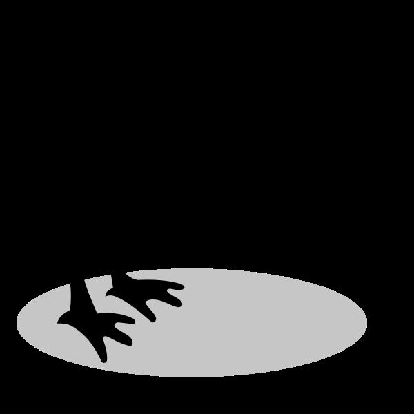Silhouette of a kiwi bird