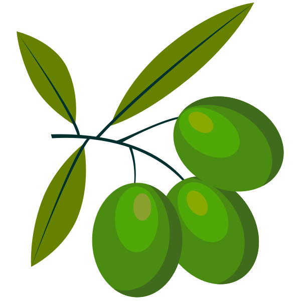 Green olive fruit