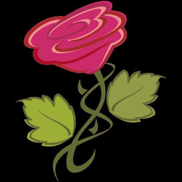Pink rose-1627594843
