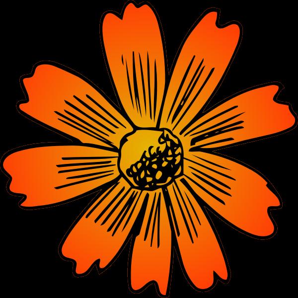 Flower 197 (colour)