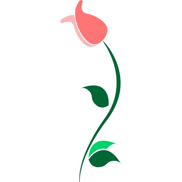 orange flower with stem