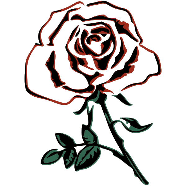 Rose 34